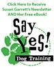 Say Yes Dog Training